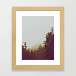 Olive Green Sepia Misty Pine Forest Landscape Photography Parallax Trees Framed Art Print