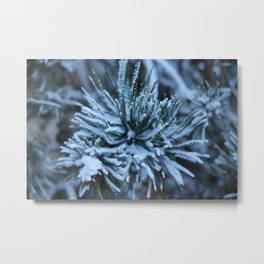 French Alps 2 Metal Print