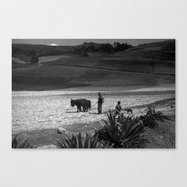 Peru Journey NO4 Canvas Print