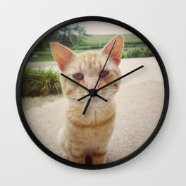 Majestic Cat Wall Clock
