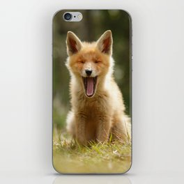 The Yawning Fox Kit iPhone Skin