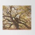 Angel Oak 5 by hueandeyephotography