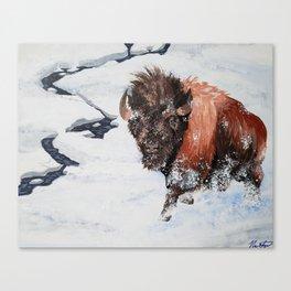 Montana Spring Canvas Print