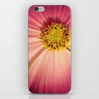 cosmos iPhone & iPod Skins featuring Cosmos by KunstFabrik_StaticMovement Manu Jobst
