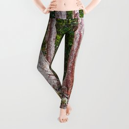 Buttress root in the rainforest Leggings