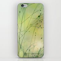 grass iPhone & iPod Skins featuring Grass by Lena Weiss