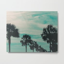 Palm or Etto? Metal Print