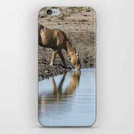 Reflection of a Stallion iPhone Skin