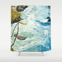 The Collision Shower Curtain