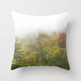 Veil Throw Pillow