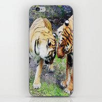 tigers iPhone & iPod Skins featuring Tigers by Irene Jaramillo