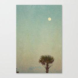 Full Moon and Palm Tree Canvas Print