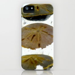 Sand Dollar iPhone Case