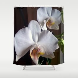 Graceful Orchids !! Shower Curtain
