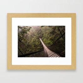 Suspension Bridge, BC, Canada Framed Art Print