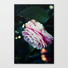 Pink Spring Magic Canvas Print