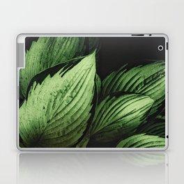 Vintage Japanese Hosta Laptop & iPad Skin