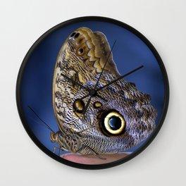 Owl Butterfly Wall Clock
