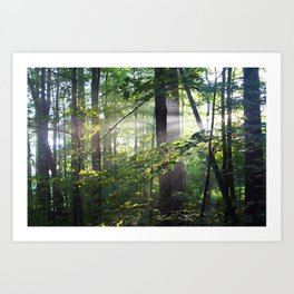Cabin Light Art Print