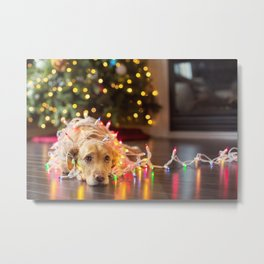 Christmas Dog Sadness! Metal Print