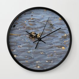 Shells in the sand 2 Wall Clock