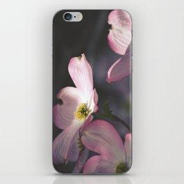 Dogwood Flower iPhone Skin