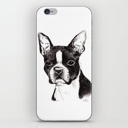 Boston Terrier Portrait iPhone Skin