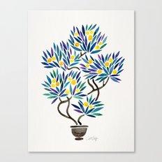 Bonsai Fruit Tree – Lemons Canvas Print