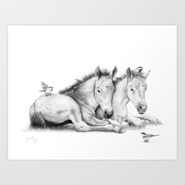 Twin Foals Art Print