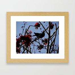 bird on the tree Framed Art Print