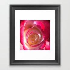 Eye Of The Rose Framed Art Print