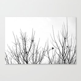 Birds on Branches Canvas Print