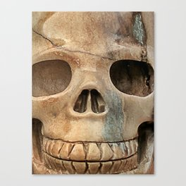 Picasso Stone Skull Canvas Print