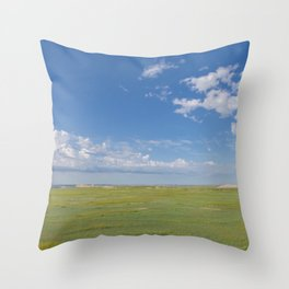 Wide Open Spaces - Badlands Photography Throw Pillow