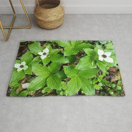 Canadian bunchberry Rug