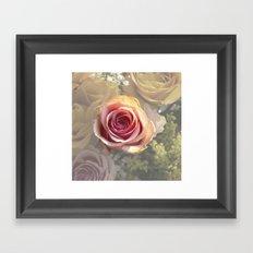 Single Rose Framed Art Print