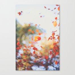 . Orange Leaves . Canvas Print