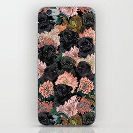 Because Black Pug iPhone Skin