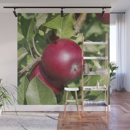 Apple Almost Ready Wall Mural