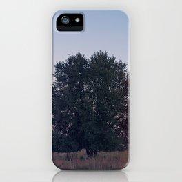 Dawn Pt. 1 iPhone Case