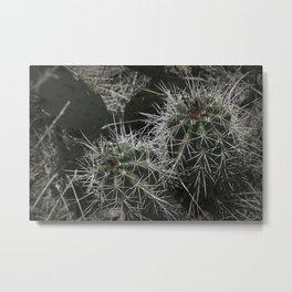 Stick Metal Print