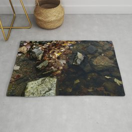 Autumn Colors in the Water Rug