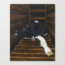 Simon Canvas Print