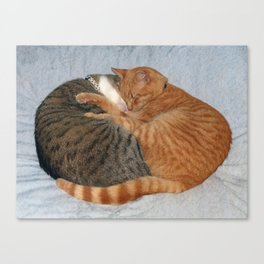 Ball of Cuteness Canvas Print