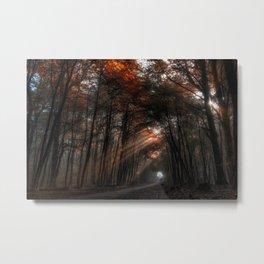 Ein Lichtschein Metal Print