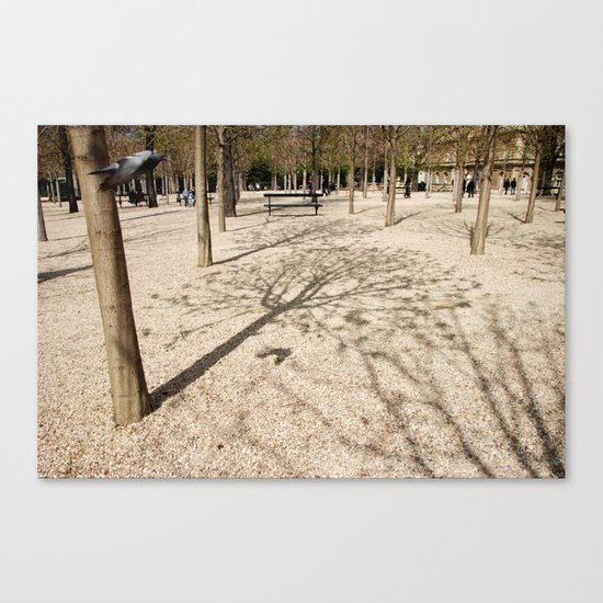 Tree & Shadow Canvas Print