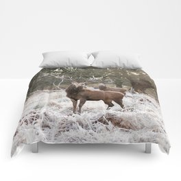 Double vision Comforters