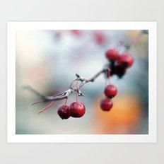 Fall Berries Art Print