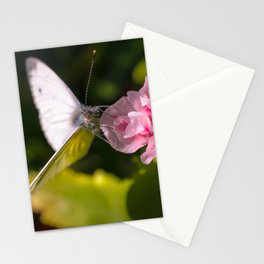 White butterfly on a plant in nature Stationery Cards