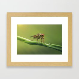 The monsters are others Framed Art Print